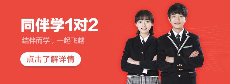 爱智康同伴学1对2(北京)